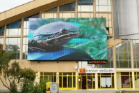 LED screen Medias Promotion